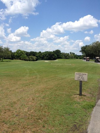Arnold Palmer's Bay Hill Lodge: Hit to right slope and let it roll to pin