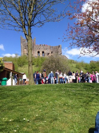 Dudley Zoo and Castle : Lovely