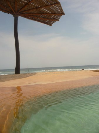 Playa Viva: watching the waves while floating in the beachside pool