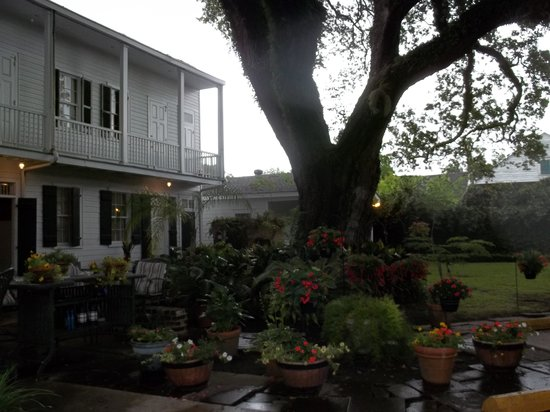 Ashton's Bed and Breakfast: back courtyard