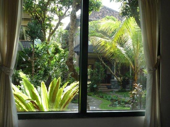 Dewangga Bungalow: View from my room