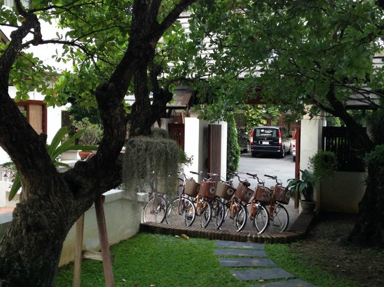 Rimping Village: Cycles.. free of cost