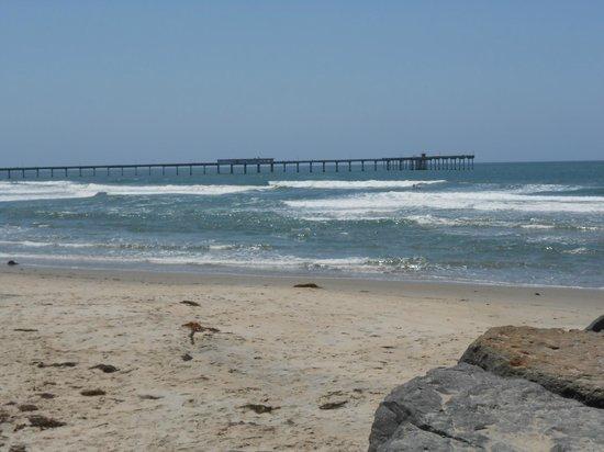 Ocean Beach Hotel: OB beach