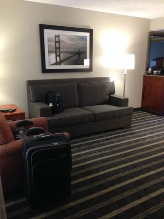 Embassy Suites by Hilton Hotel San Francisco Airport (SFO) - Waterfront : Sitting area- sofa bed