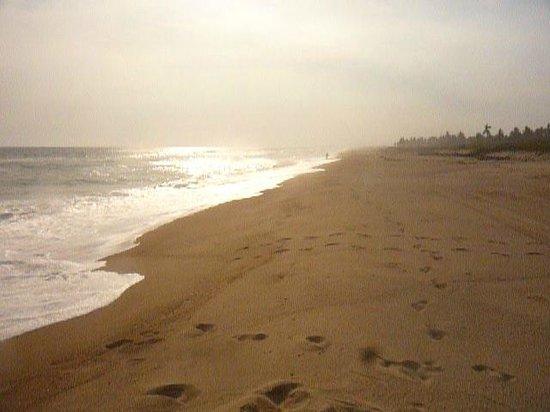Playa Viva: miles of empty beach