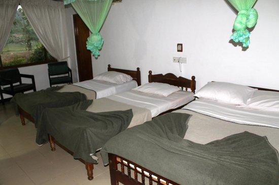 Oruthota Chalets: Room