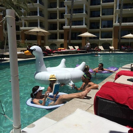 Casa Dorada Los Cabos Resort & Spa: The infamous large swan floaty