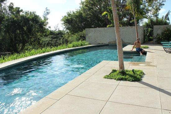 Hix Island House: Pool