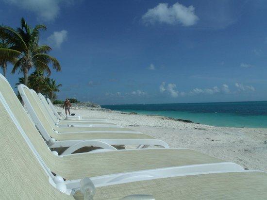 Hotel Riu Palace Peninsula: Beach View