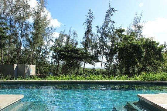 Hix Island House: View form the pool