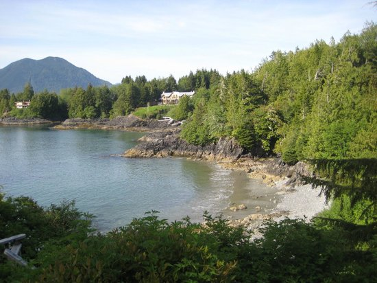 The Tides Inn on Duffin Cove : View of Duffin cove from B&B