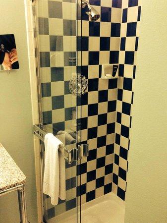 Hotel Triton: Shower