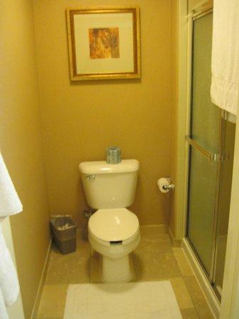 Hampton Inn Arkadelphia : Bathroom with walk in shower