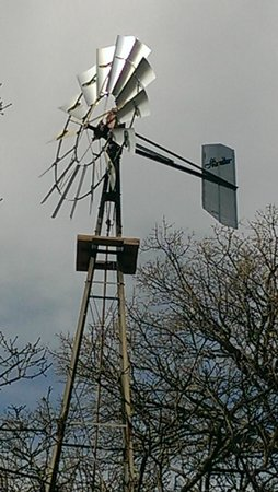 Elmer W. Oliver Park: Windmill