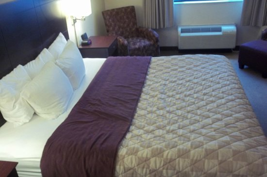 Clarion Hotel Airport: The bed was small lengthwise, but comfortable.