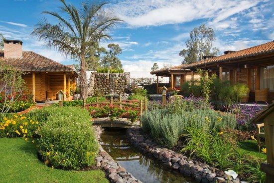 Hosteria Cabanas del Lago : Our relaxing surroundings