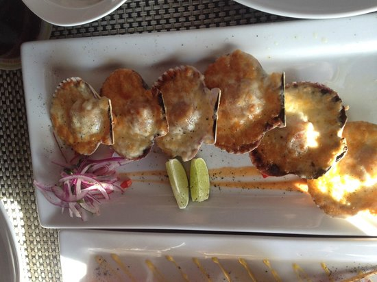 Lima 12 05 Peruvian Cuisine & Steak House: Scallops with Melted Cheese in Sea Shells