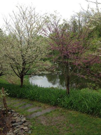 Buttermilk Falls Inn & Spa: Beautiful grounds