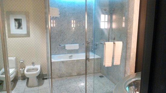 Park Hyatt Mendoza : Separate shower and bathtub