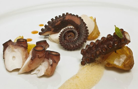 Epic : Luscious Octopus