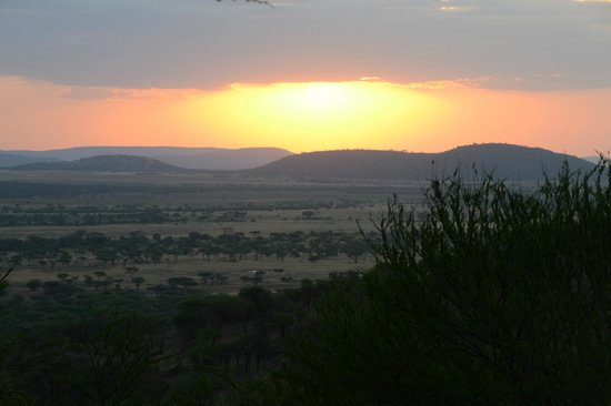 Serengeti Serena Safari Lodge: Sunset from pool area