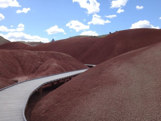 Hotel Condon: The Painted Hills