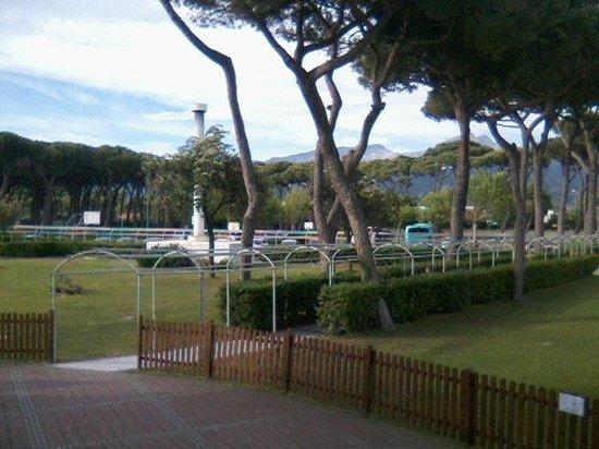 Villaggio Vacanze Torre Marina: La pineta e il verde della struttura