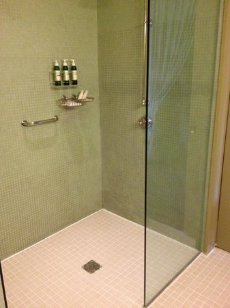 Hotel Healdsburg : showerNo Fraud