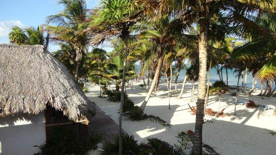 Playa Sonrisa: VIEW FROM ROOM