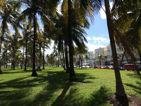 South Beach : Vista da Collins Ave