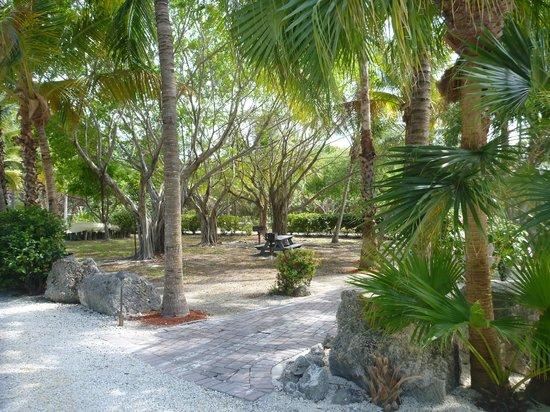 Atlantic Bay Resort : Grounds