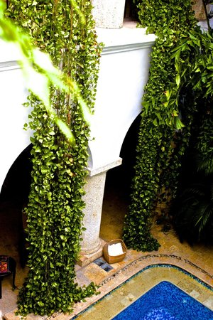 San Pedro Hotel Spa : Plants draping rom the balconies into the courtyard /pool near reception