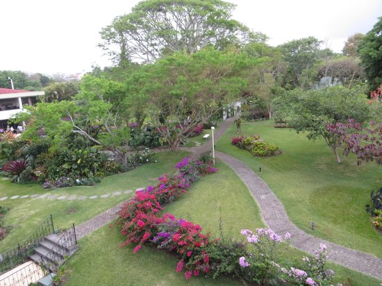 Hotel Bougainvillea: Garden view