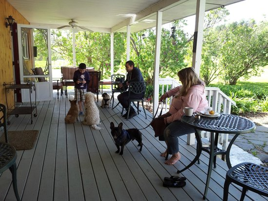 The Paw House Inn: Outdoor Dining on the Porch