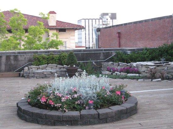 Old Capitol Inn: Rooftop garden