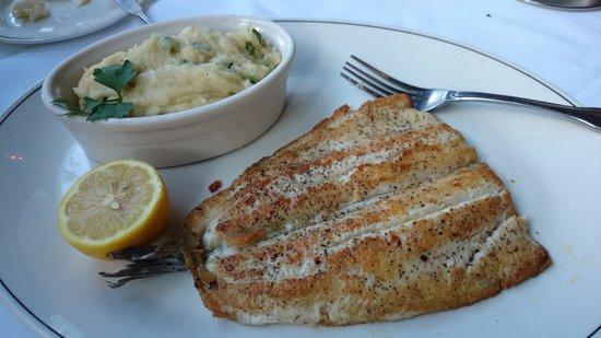 Truluck's Restaurant : Idaho trout
