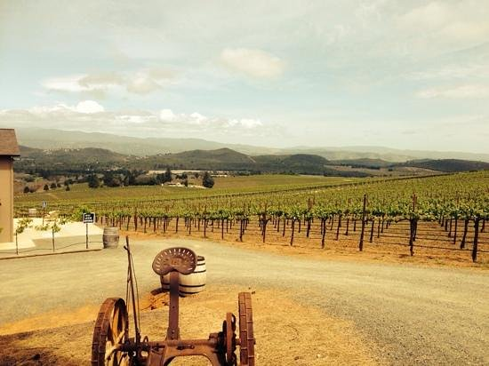 Laujor Estate Winery: from parking lot