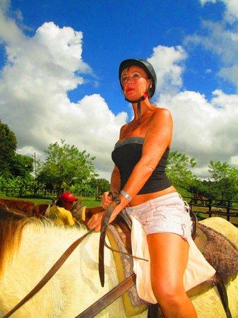 Zip 'n' Ride: Horse riding on Zip N Ride