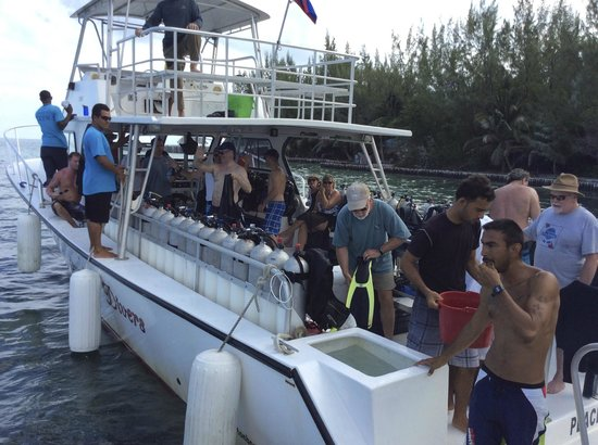 Thatch Caye, a Muy'Ono Resort : The dive boat chartered by Thatch Caye for our dive group.