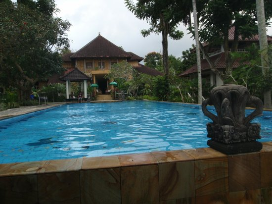 Ubud Villas and Spa: Large lap pool