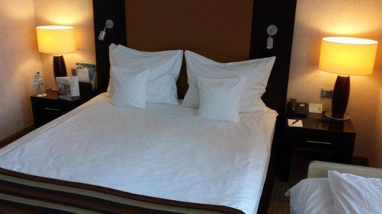 Polonia Palace Hotel : Room