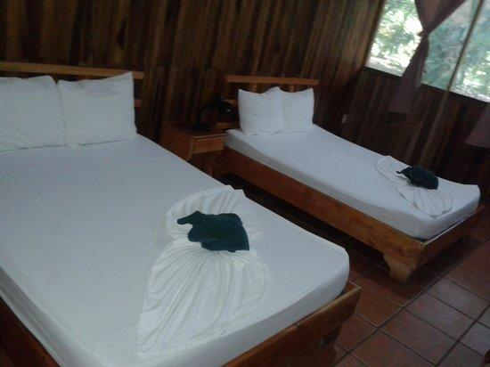 Turtle Beach Lodge: notre chambre