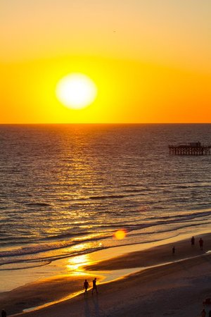 Doubletree Beach Resort by Hilton Tampa Bay / North Redington Beach : Sunset from our balcony