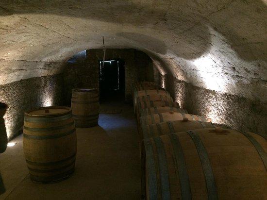 Paris Wine Day Tours : Wine cellar