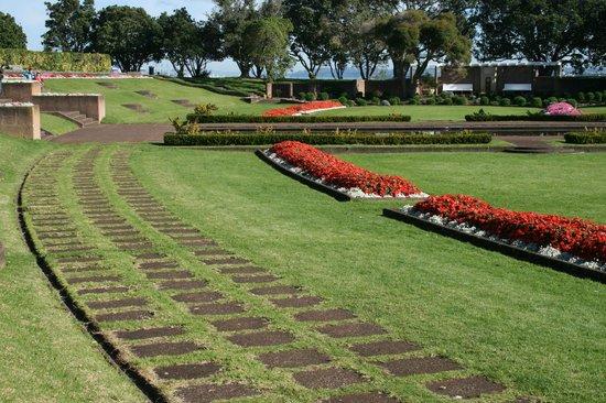 MJ Savage Memorial Park : Flowers