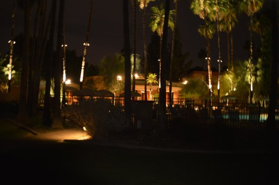 DoubleTree by Hilton Phoenix Tempe: Night time Pool View
