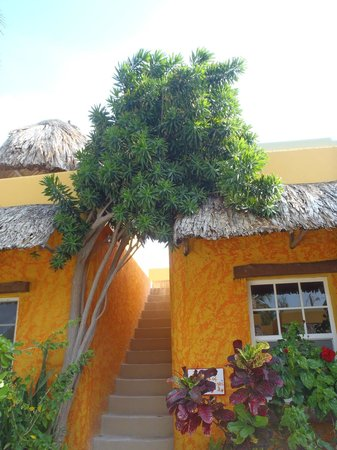 Seaside Cabanas: .