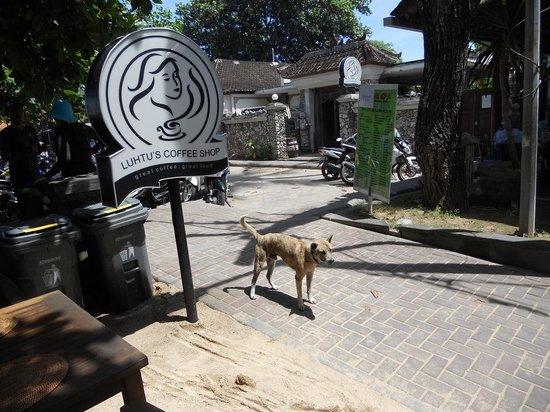 Luhtu's Coffee Shop: Luhtus Coffee Shop