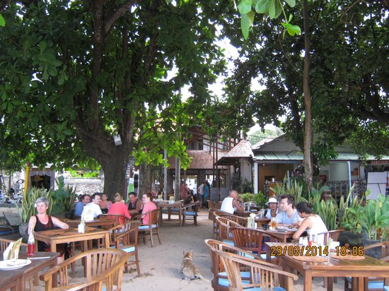 Luhtu's Coffee Shop: View of outdoor seating area