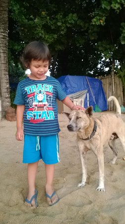 """Luhtu's Coffee Shop: My son with the cafe owners beautiful dog """"Pito"""""""